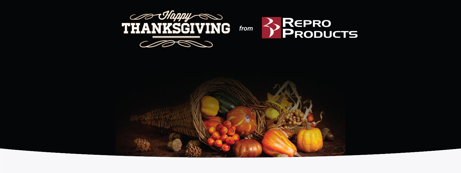 Happy Thanksgiving from Repro Products